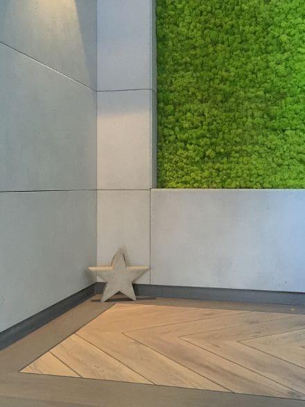 beton architektonicxzny realizacja mech - Chrobotek reniferowy - zieleń dla leniwych